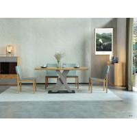当代青年家具:餐桌DT9202-16